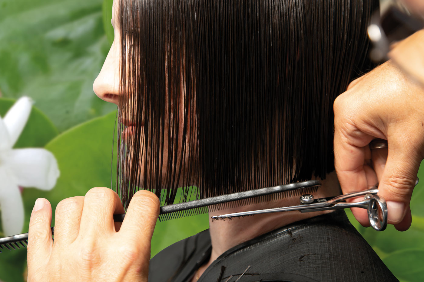 Peter Ziegler* Haarschnitte - Manueller Schnitt